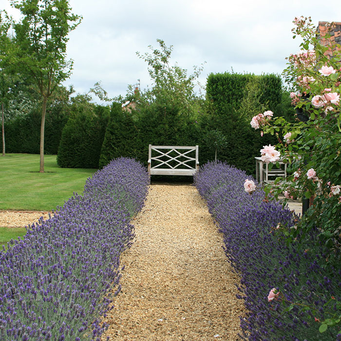 A Classic English Garden   Landscape Design Project By Susannah McDougall,  Norfolk.