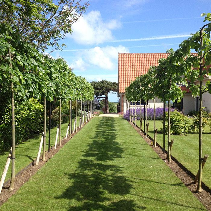 Good Contemporary Coastal Garden